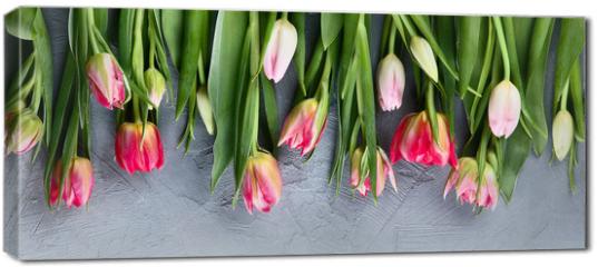 Obraz na płótnie canvas - Fresh tulip flowers