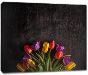 Obraz na płótnie canvas - Vibrant colorful tulips