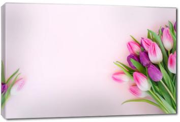 Obraz na płótnie canvas - Pink fresh tulips