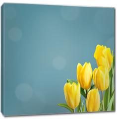 Obraz na płótnie canvas - Sprind floral background for design