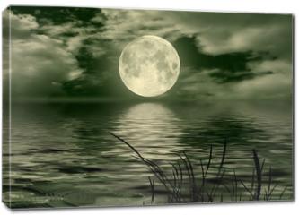 Obraz na płótnie canvas - Full moon image with water