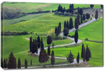 Obraz na płótnie canvas - landscapes