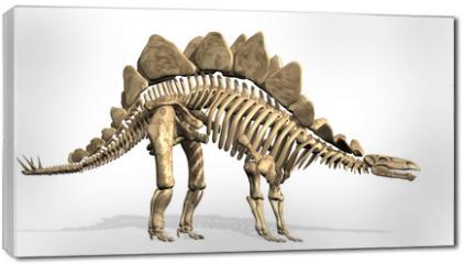 Obraz na płótnie canvas - Stegosaurus Skeleton