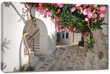 Obraz na płótnie canvas - Small backstreet on Amorgos island, Greece