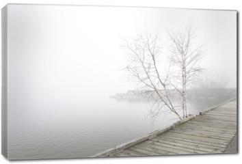 Obraz na płótnie canvas - Pier and white birch trees on foggy lake