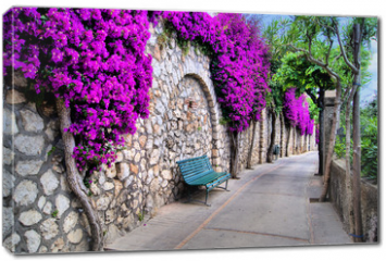 Obraz na płótnie canvas - Vibrant flower draped pathway in Capri, Italy