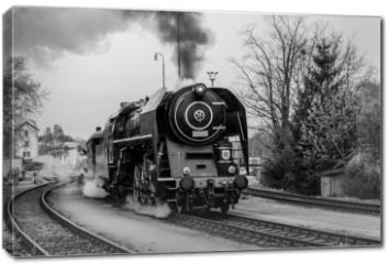Obraz na płótnie canvas - Steam train