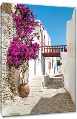 Obraz na płótnie canvas - Traditional greek alley on Sifnos island, Greece