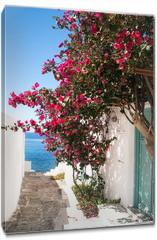 Obraz na płótnie canvas - Traditional greek alley on Sifnos island, Greece