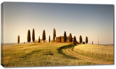Obraz na płótnie canvas - Campo di Grano e Cipressi, Toscana