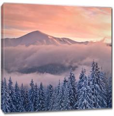 Obraz na płótnie canvas - mountain