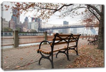Obraz na płótnie canvas - New York - Roosevelt Island