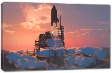 Obraz na płótnie canvas - The launch