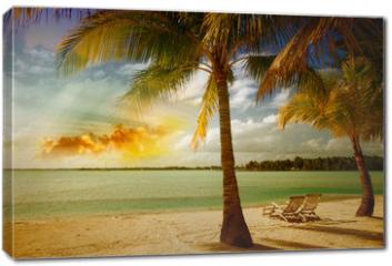 Obraz na płótnie canvas - Beautiful marine landscape with tree on a pristine beach