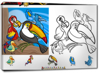 Obraz na płótnie canvas - exotic birds cartoon coloring page set