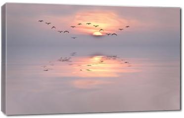 Obraz na płótnie canvas - amanecer de colores suaves