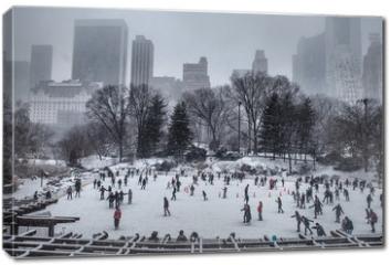 Obraz na płótnie canvas - Central Park