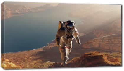 Obraz na płótnie canvas - The astronaut
