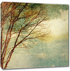 Obraz na płótnie canvas - Grunge vintage nature background