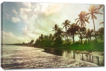 Obraz na płótnie canvas - Tropical beach