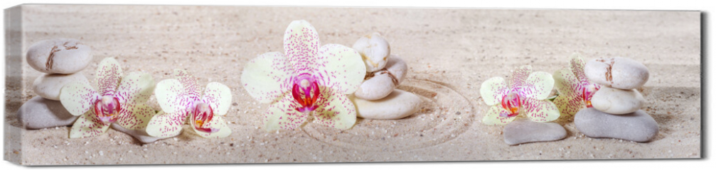 Obraz na płótnie canvas - Panorama with orchids and zen stones in the sand