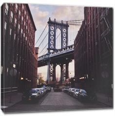 Obraz na płótnie canvas - Manhattan bridge