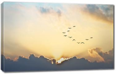 Obraz na płótnie canvas - el sol se asoma entre las nubes