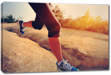 Obraz na płótnie canvas - woman runner athlete running at mountain trail