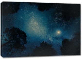 Obraz na płótnie canvas - Starry sky through trees