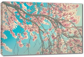 Obraz na płótnie canvas - Wiosenny kwiat