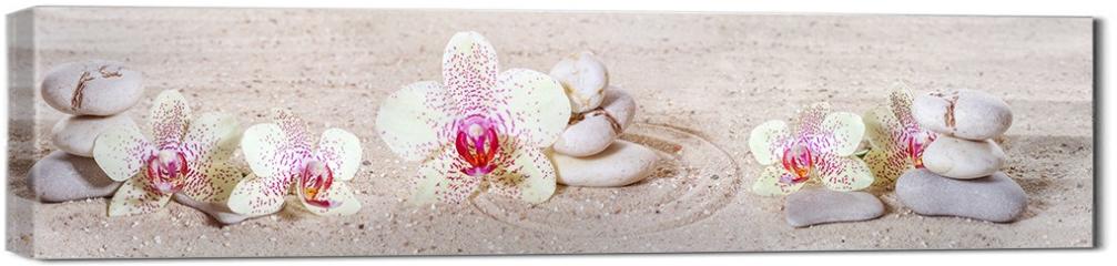 Obraz na płótnie canvas - Panorama z orchideami i kamieniami zen w piasku