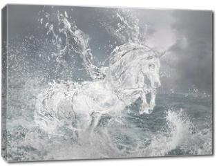 Obraz na płótnie canvas - Horse from water.