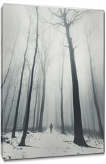 Obraz na płótnie canvas - man in forest with tall trees in winter