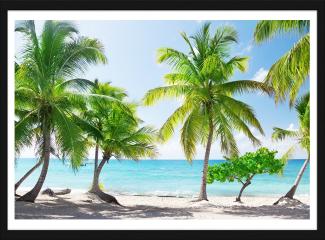 Obraz w ramie - Dominikana, Wyspa Catalina