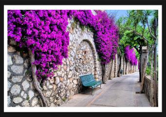 Obraz w ramie -  Tętniąca życiem ścieżka kwiatowa w Capri, Włochy