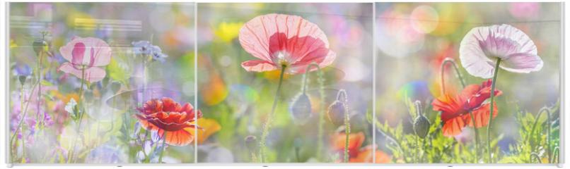 Panel szklany do szafy przesuwnej - summer meadow with red poppies