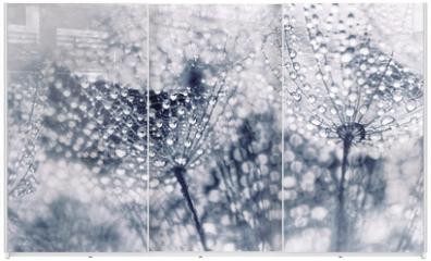 Panel szklany do szafy przesuwnej - Plant seeds with water drops
