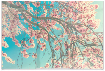Panel szklany do szafy przesuwnej - Spring blossom