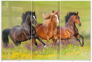 Panel szklany do szafy przesuwnej - Horses run gallop in flower meadow