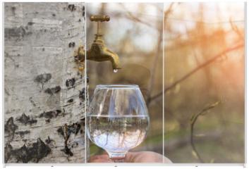 Panel szklany do szafy przesuwnej - Birch juice