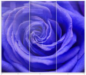 Panel szklany do szafy przesuwnej - rose