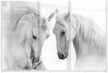 Panel szklany do szafy przesuwnej - Couple of white horse on white background