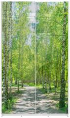 Panel szklany do szafy przesuwnej - Birkenwald Weg