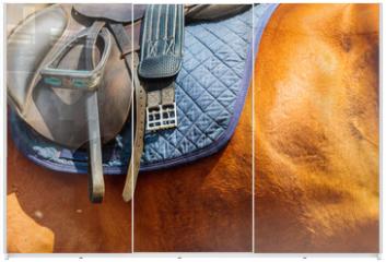 Panel szklany do szafy przesuwnej - Detailed close up of horse saddle with stirrup