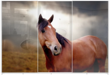 Panel szklany do szafy przesuwnej - Horse in autumn