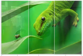 Panel szklany do szafy przesuwnej - green gecko lizard