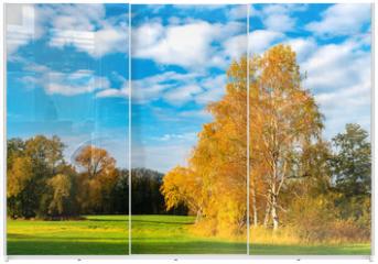 Panel szklany do szafy przesuwnej - Birke im Herbst
