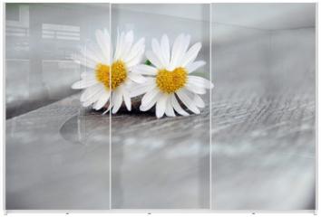 Panel szklany do szafy przesuwnej - verliebt