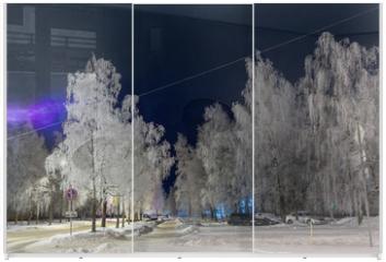 Panel szklany do szafy przesuwnej - Frost decorated birch with frost. Urban landscape