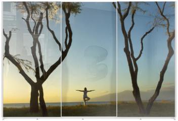 Panel szklany do szafy przesuwnej - life in balance